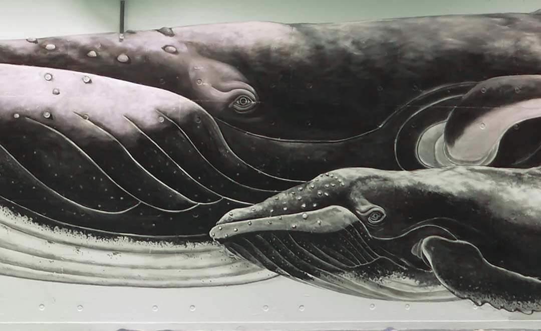 壁畫-海底世界