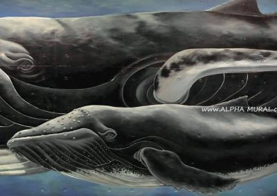 mural-artworks-Underwater World-03