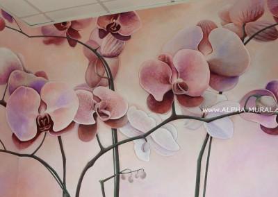 Mural-artworks-Phalaenopsis(蝴蝶蘭壁畫)01